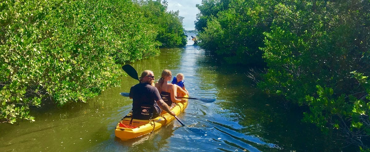Manatee Kayak Tour on the Banana River Aquatic Preserve