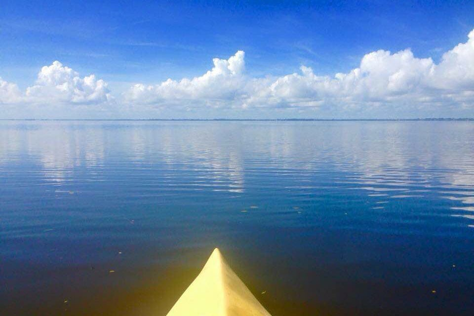 Manatee kayak tour near Cocoa Beach