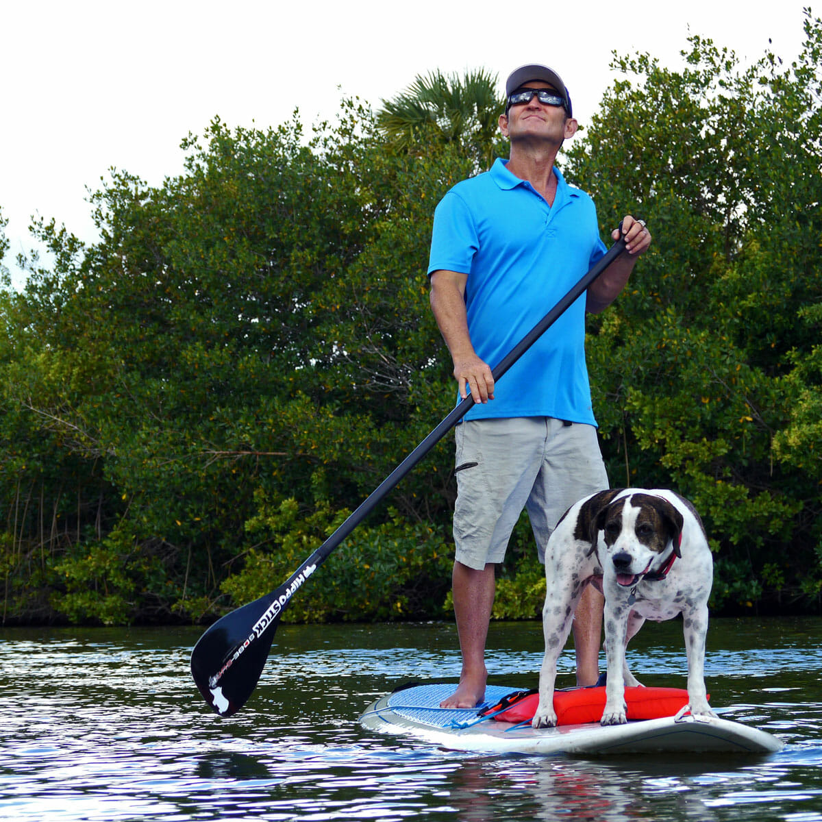 Stand Up Paddle With Manatees - Girard Middleton and Kona Dog