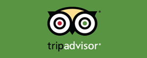 View SoBe Surf's reviews on TripAdvisor