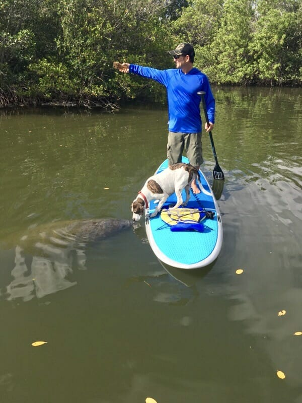 GIRARD MIDDLETON AND DOG KONA KISSING MANATEE ON SOBE SURF AND PADDLE NATURE TOUR FLORIDA